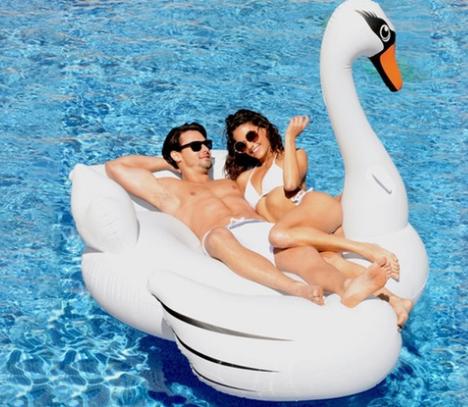 Swan_Groupon