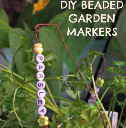 bead marker